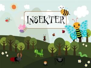 Forside Insekter
