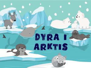 Dyra i Arktis