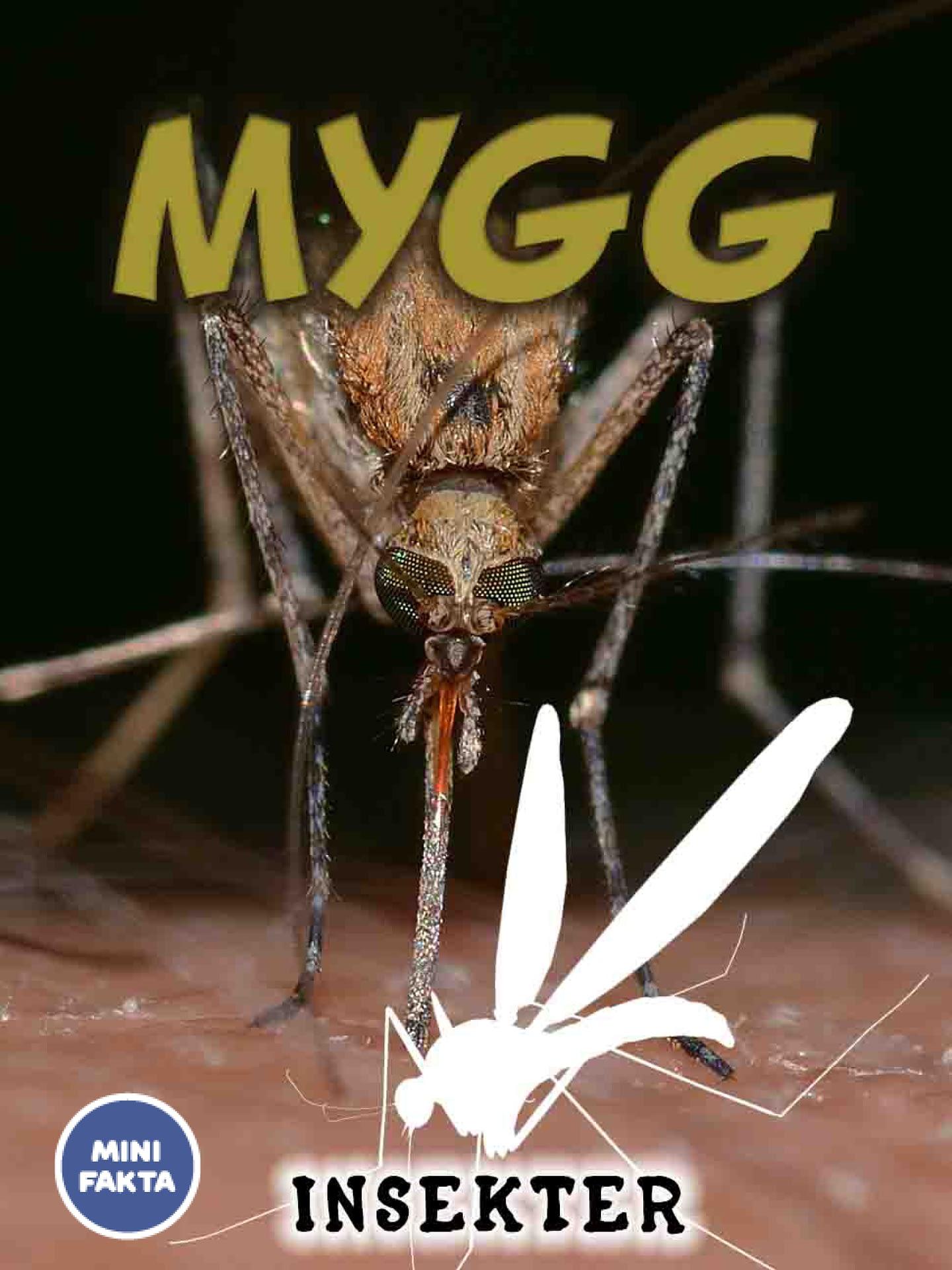 Mygg Minifakta