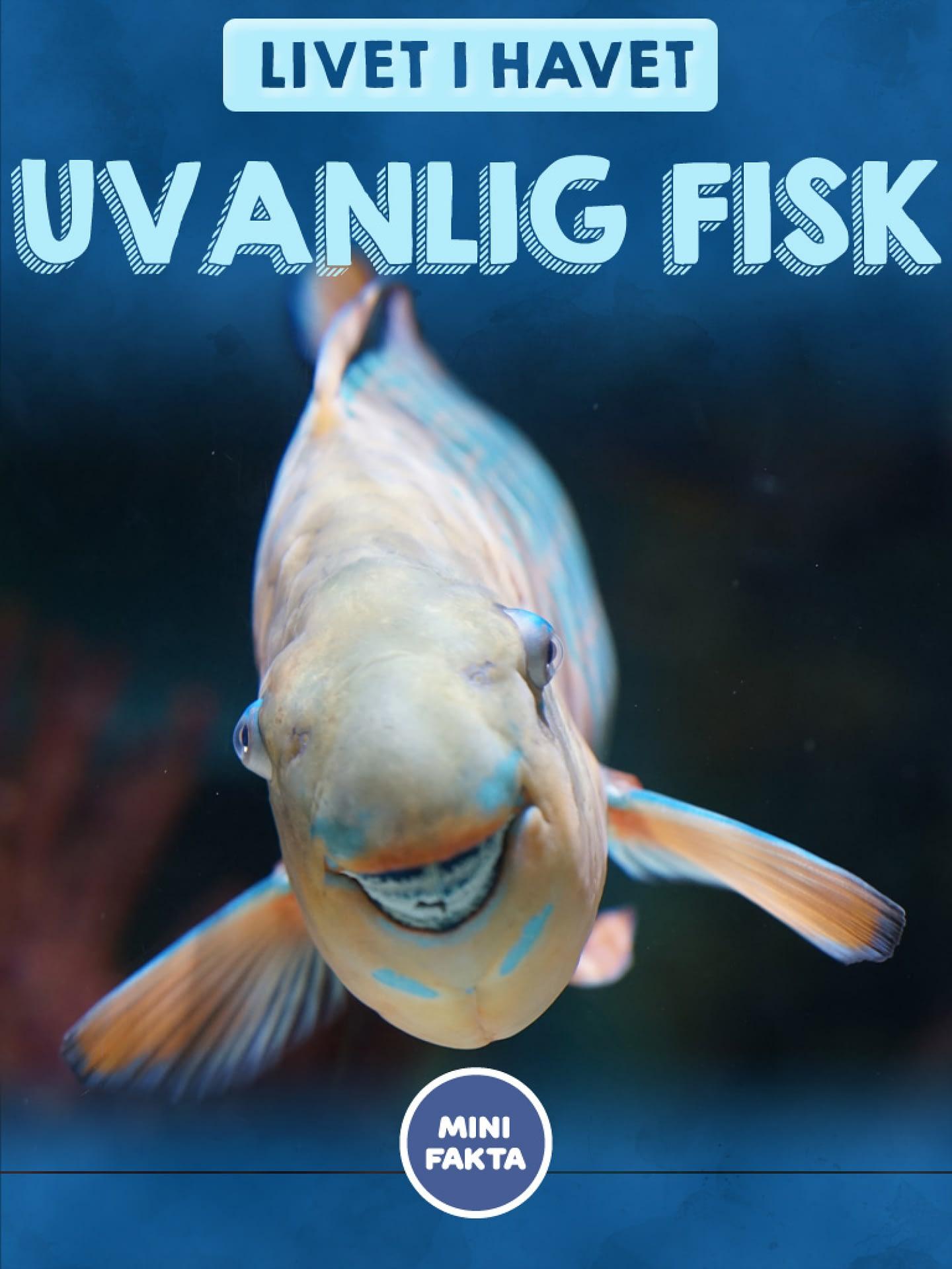 Uvanlig fisk