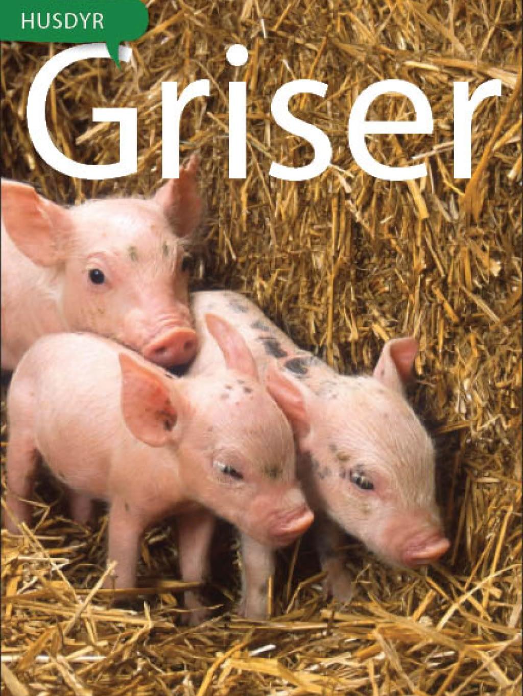 Griser