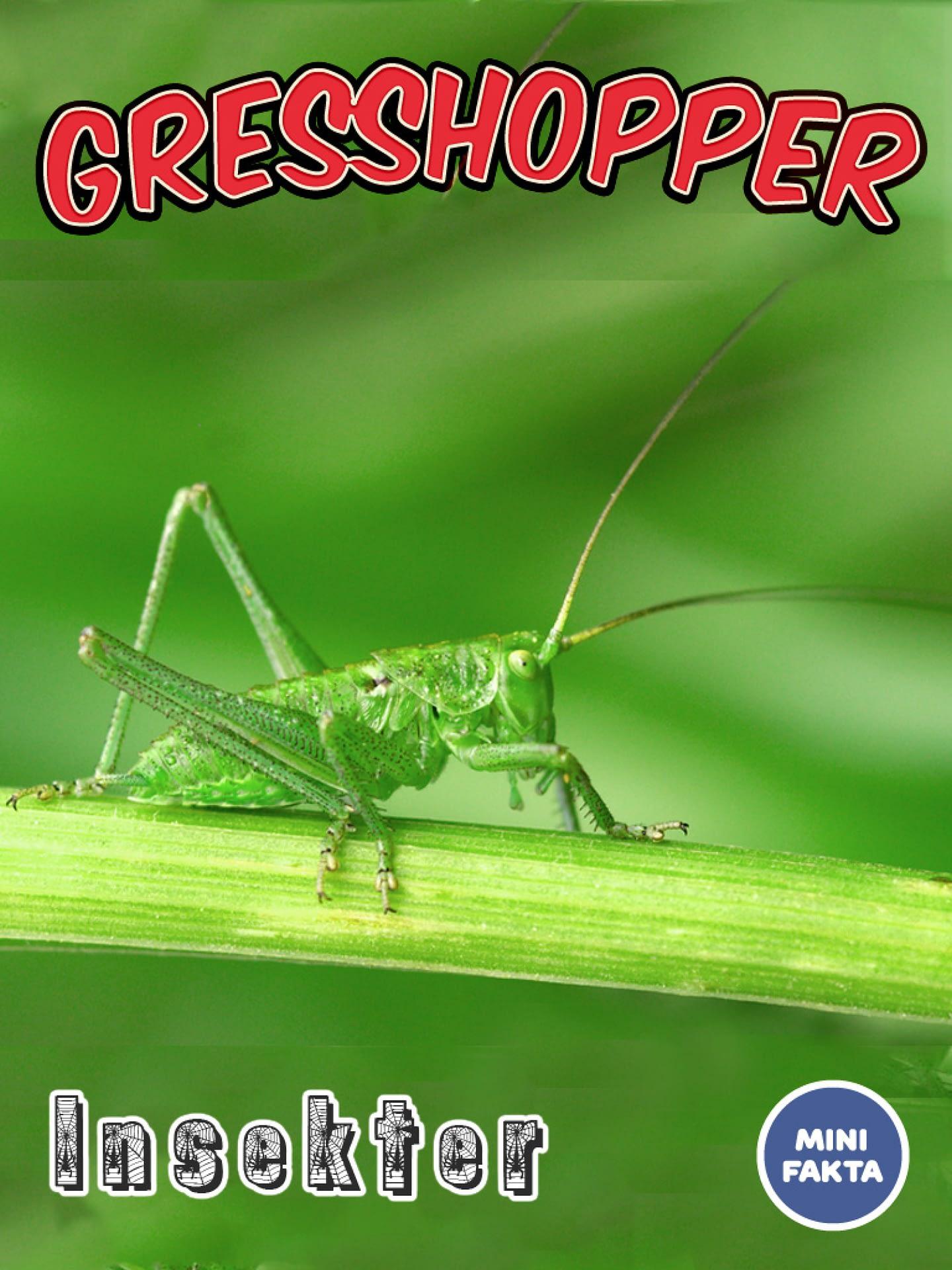 Gresshopper Minifakta