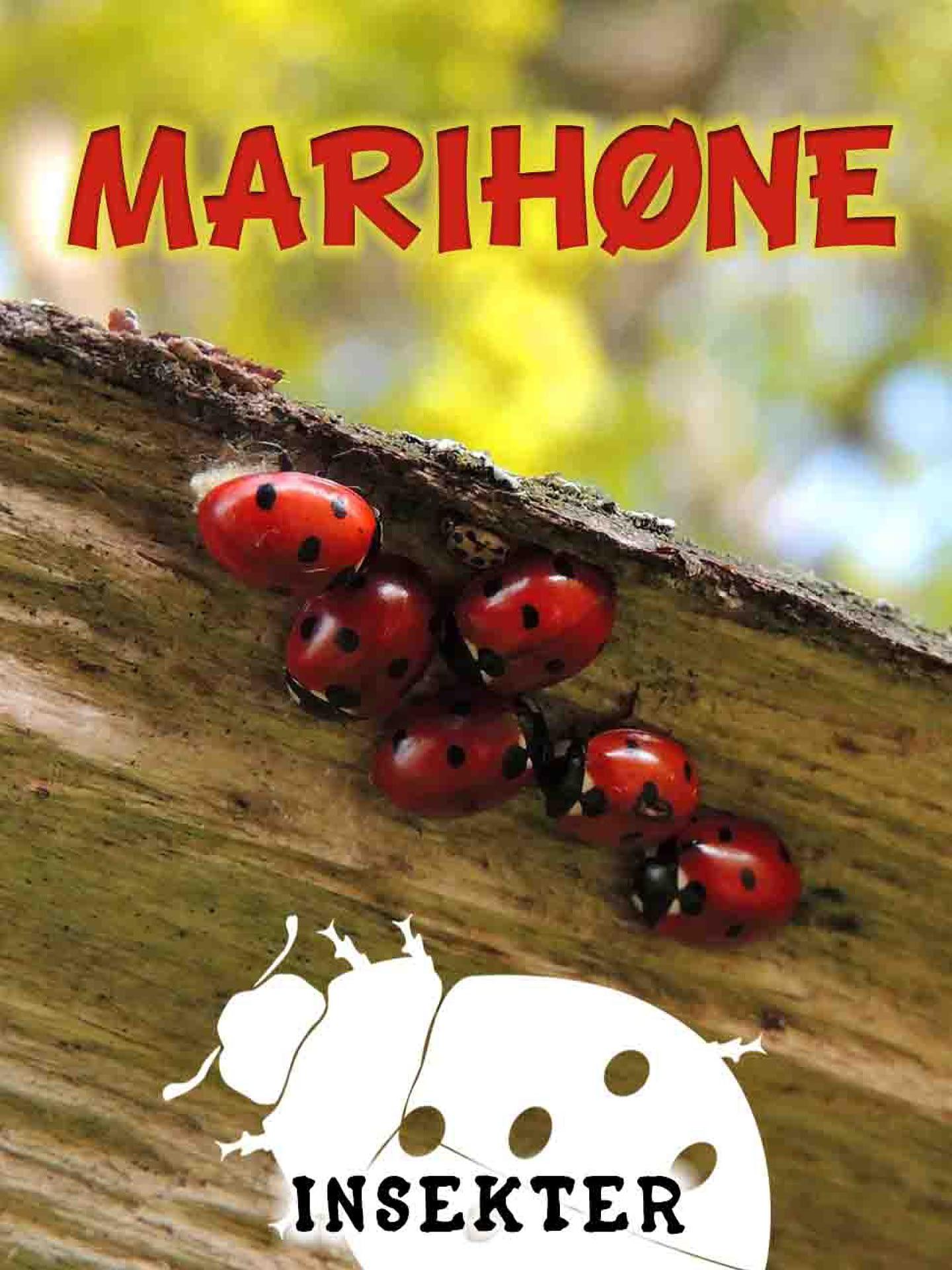 Marihøne